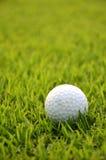 Пакостный шар для игры в гольф на траве стоковое фото