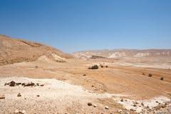 Палестина Стоковые Изображения