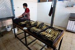 Палестинский человек подготавливает скумбрию куриться в Рафахе в южном секторе Газа стоковые фотографии rf