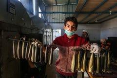 Палестинский человек подготавливает скумбрию куриться в Рафахе в южном секторе Газа стоковое изображение