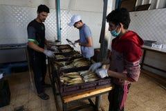 Палестинский человек подготавливает скумбрию куриться в Рафахе в южном секторе Газа стоковая фотография