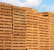 паллеты деревянные Стоковое Изображение