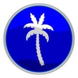 пальма иконы Стоковое Изображение