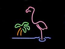пальма неона фламингоа Стоковое Изображение