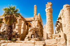 Пальма около египетских столбцов в Луксоре, Египте Стоковые Изображения