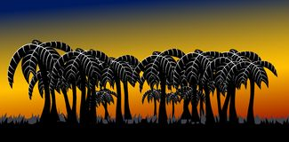 пальма переулка Стоковое Фото