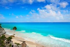 Пальма пляжа бирюзы Tulum в Майя Ривьеры на майяском Стоковое Изображение RF