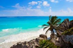 Пальма пляжа бирюзы Tulum в Майя Ривьеры на майяском Стоковая Фотография RF