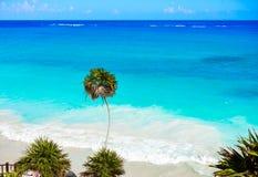 Пальма пляжа бирюзы Tulum в Майя Ривьеры на майяском Стоковое фото RF