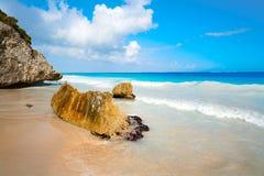 Пальма пляжа Tulum в Майя Ривьеры Стоковые Изображения RF