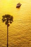 Пальма против шлюпки в свете захода солнца Стоковое Изображение RF