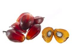 Пальмовое масло стоковая фотография rf