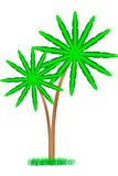 пальмы белые Стоковое Изображение