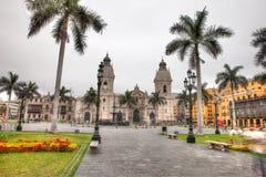 Пальмы в мэре de Лиме площади стоковое фото