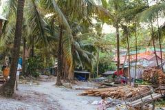 Пальмы и белый песчаный пляж стоковая фотография