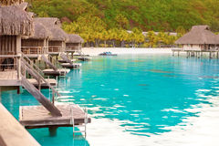 Пальмы и малые дома на water.tropical стоковое фото rf