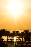 Пальмы и море на тропическом заходе солнца (восход солнца) Стоковые Изображения RF
