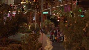 Пальмы на Лас Вегас Боулевард загорелись на ноче - США 2017 сток-видео