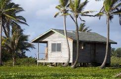 пальмы Никарагуаа дома cabana Стоковые Изображения