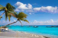 Пальмы пляжа Playa del Carmen мексиканськие стоковое фото