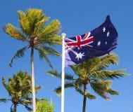 пальмы флага Австралии тропические Стоковое Изображение