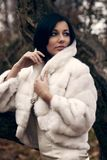 пальто ворота шикарная девушки белизна высоко Стоковое Изображение RF