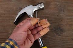 Пальцы и молоток руки плотника Стоковое Фото
