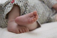 пальцы ноги завитые младенцем Стоковые Фото