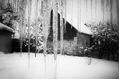 Памяти зимы Стоковые Изображения