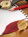 памятка листва Стоковые Изображения RF