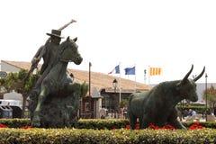 Памятник бой Bull, Camargue, Франция Стоковые Фотографии RF