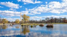 Памятник Вашингтона от садов конституции - DC Вашингтона, США Стоковое Фото