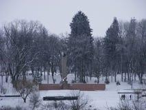Памятник Великой Отечественной войны 1941-1945 в покрытом снег парке Стоковые Фото