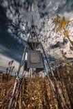 Памятник в лесе Стоковые Изображения