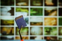 память карточки цифровая Стоковое Фото
