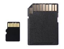 память sd карточки Стоковая Фотография RF