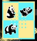 панда карточки Стоковые Фото