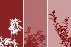 панели листва Стоковое Изображение RF