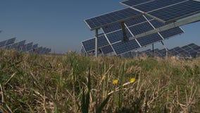 Панели солнечных батарей сборников Солнца и заводы поля двигают в ветер акции видеоматериалы