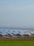 панель поля солнечная Стоковая Фотография RF