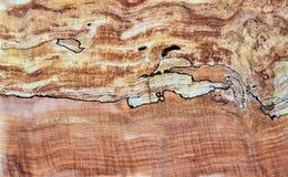 Панель древесины клена Spalted Стоковое Изображение RF
