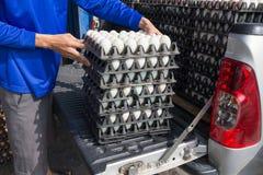 Панель яичка вида жизни работника в оптовом рынке на тележке Стоковые Фотографии RF