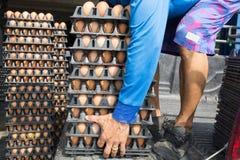 Панель яичка вида жизни работника в оптовом рынке на тележке Стоковое Фото
