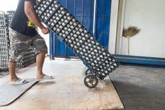 Панель яичка вида жизни работника в оптовом рынке Стоковое Изображение RF