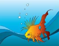панк рыб Стоковые Фото