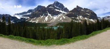 Панорама ландшафта горы в бульваре Icefields Стоковые Изображения