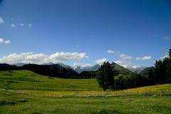 Панорама ландшафта горы Стоковое Фото