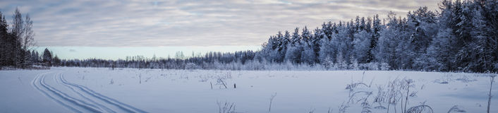 Панорама ландшафта зимы Стоковое Изображение RF