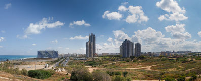 Панорама батата летучей мыши стоковые фото