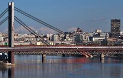 Панорама Белграда Стоковые Фотографии RF
